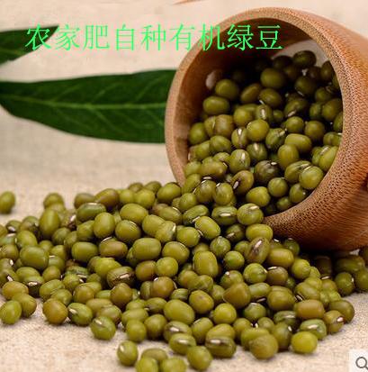 薄皮绿豆 新货农家自产小绿豆 笨绿豆 明绿豆 绿豆汤五谷杂粮粗粮500克  包邮