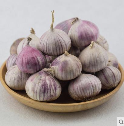 2017年新鲜紫皮独头大蒜子 精选湖南农家自种红皮干蒜250g