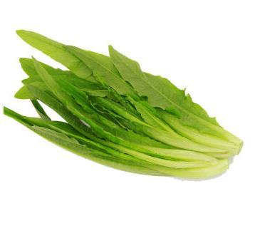 油麦菜 约400g 自营蔬菜      限湖南祁东