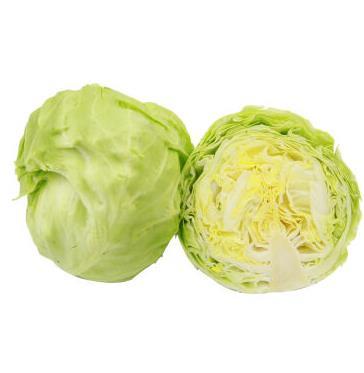 圆白菜 约500g 自营蔬菜    限湖南祁东