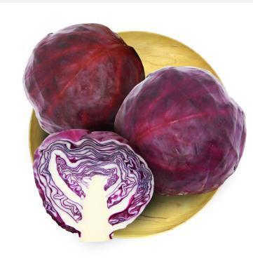 紫甘蓝 约800g 自营蔬菜    限湖南祁东