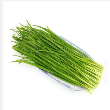韭菜 约300g 自营蔬菜 限湖南祁东区