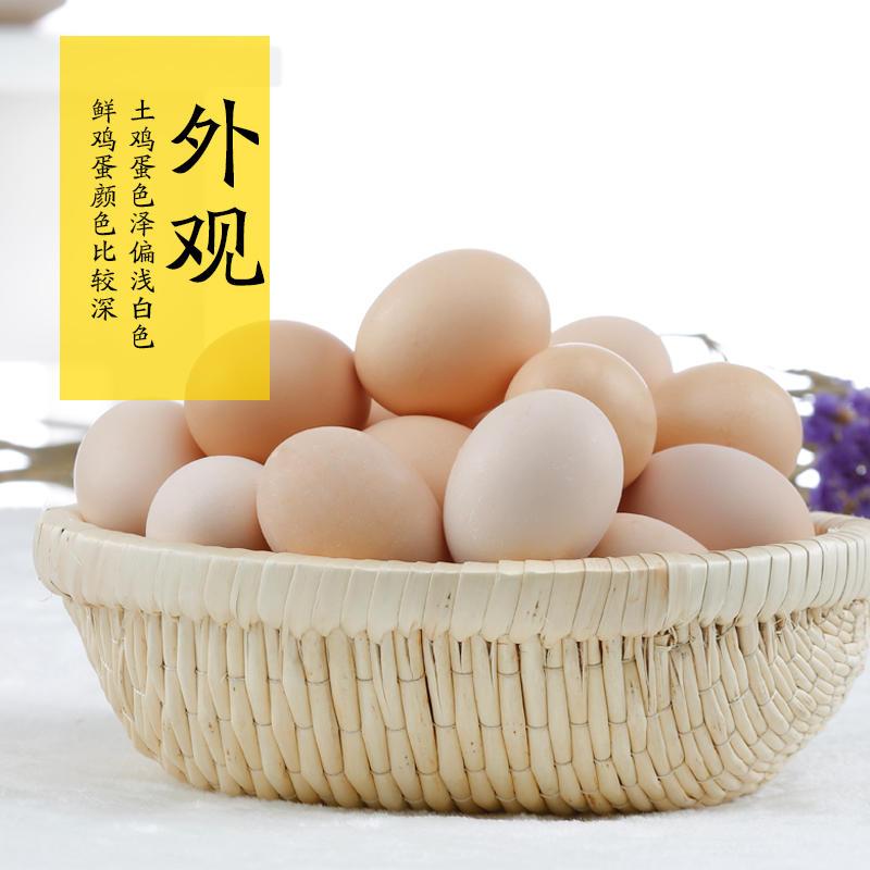 湖南祁东农家散养土鸡蛋新鲜草鸡蛋正宗自养柴鸡蛋30个包邮