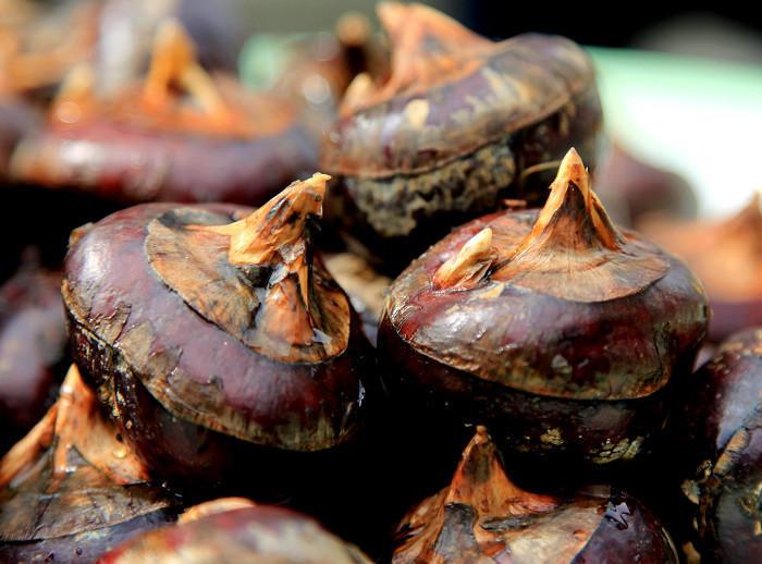 湖南祁东特产 农家自种 新鲜马蹄 荸荠 蔬菜水果5斤包邮
