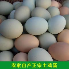 正宗新鲜农家散养土鸡蛋 放养草鸡蛋 营养鸡蛋 35枚包邮
