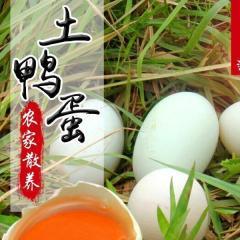 鸭蛋 土鸭蛋  农村蛋  土货  绿壳鸭蛋  蛋  1枚装(支持礼品盒送人)