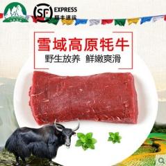 青海牦牛肉  散养牦牛肉  现杀现卖   不注水牦牛肉500g