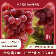 【预售】蒸湘区乡村振兴主打产品-华农葡萄&玫瑰葡萄 5/10斤 5斤