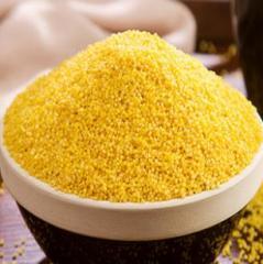 农家食用有机孕妇滋补宝宝辅食杂粮新小米黄小米有机非转基因500g