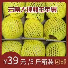 云南15度的甜野生苹果 自家种植整箱10斤包邮香脆甜冰糖心苹果