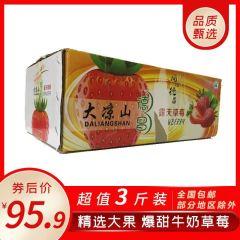 奶香草莓尝鲜价95.9三斤包邮四川大凉山