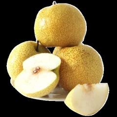 现摘砀山梨新鲜梨子10斤水果梨应季现摘整箱安徽特产汤山酥梨包邮
