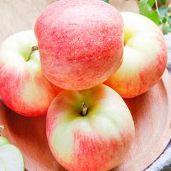 新鲜苹果水果10斤包邮当季水果一箱应季冰糖心红富士丑苹果