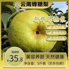 云南宾川蜂糖梨香应季新鲜水果孕妇山货整箱5/10斤包邮 10斤