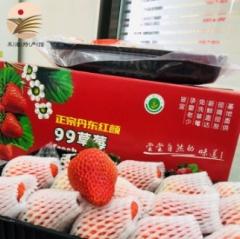 丹东草莓99九九红颜草莓牛奶草莓空运发货鲜果现摘现发品质保证坏果包赔 精选特大果(单果35-40g)(红箱礼盒)*3斤