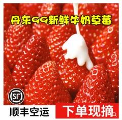 5斤大果丹东九九草莓新鲜奶油大草莓孕妇水果送礼礼盒99牛奶红颜大草莓