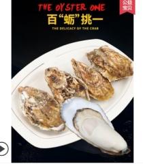 乳山生蚝鲜活10特大牡蛎带壳生吃海蛎子新鲜海鲜水产5斤一箱顺丰