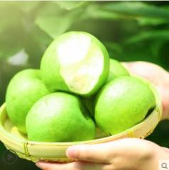 现货摘新鲜梨子翠冠梨10斤砀山梨青梨皇冠酥梨当季水果整箱包邮