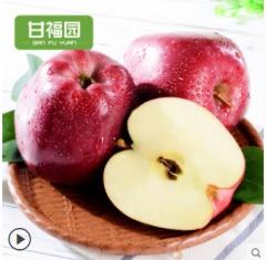【甘福园】甘肃天水花牛苹果水果带箱10斤新鲜红蛇果粉面平果包邮