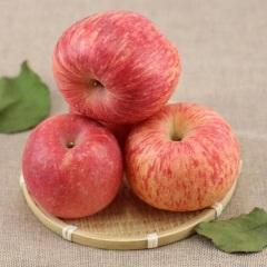 惊爆价只需28.8元5斤装山东红富士苹果